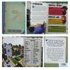 Minecraft Handbook Series Collection