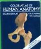 A Color Atlas of Human Anatomy