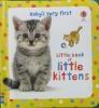 Little Book of Little Kittens (Baby's Very First Little Books)