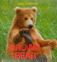 Brown Bear Eye on the Wild Suzi Eszterhas